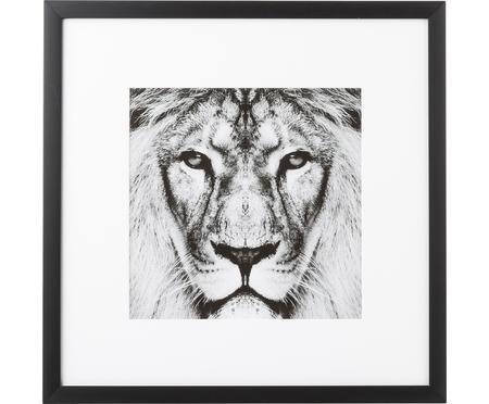 Oprawiony druk cyfrowy Lion Close Up
