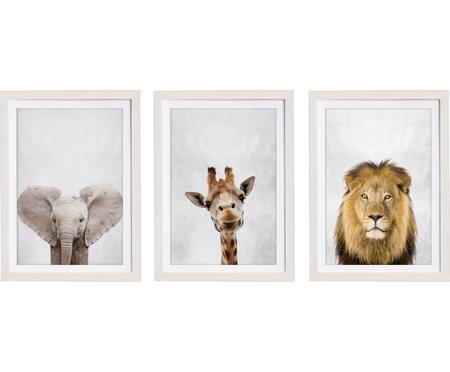 Komplet oprawionych druków cyfrowych Wild Animals, 3 elem.
